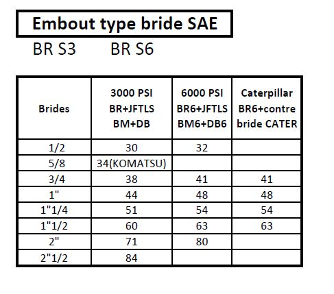 Embout type bride SAE